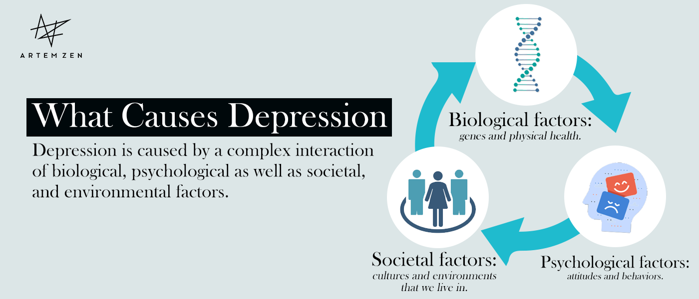 What-Causes-Depression-infographic