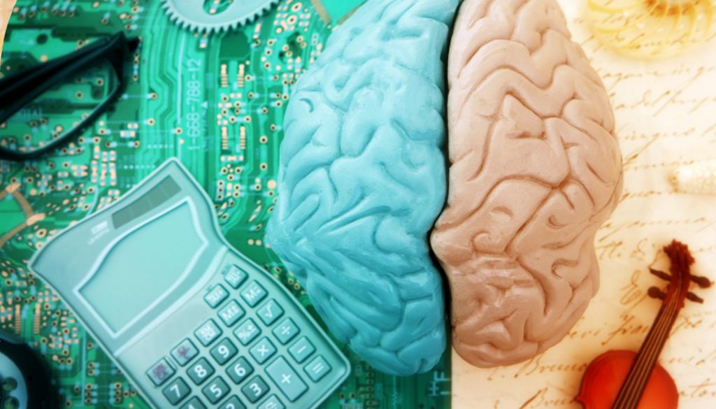 brain dominance